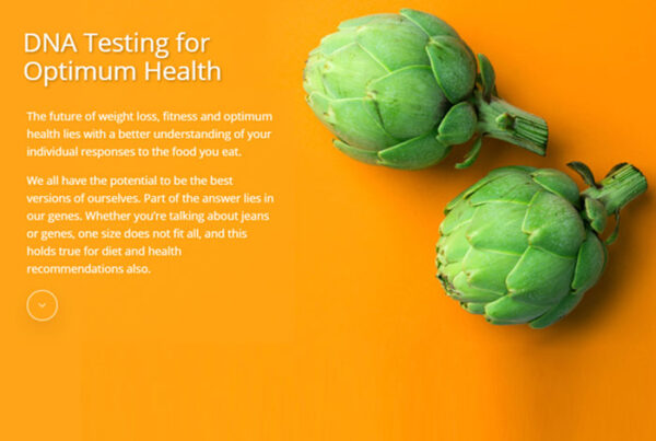 web design screenshot - photo of artichokes