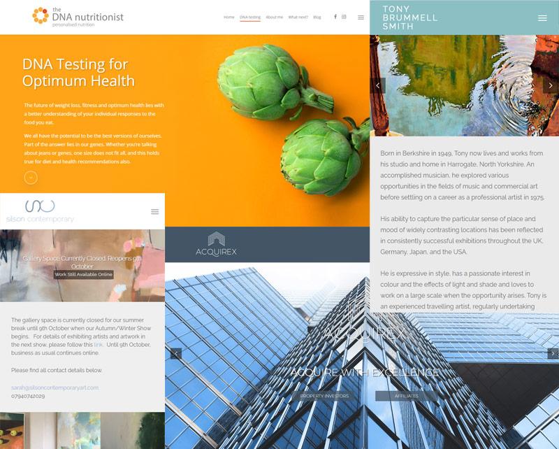 Montage of websites